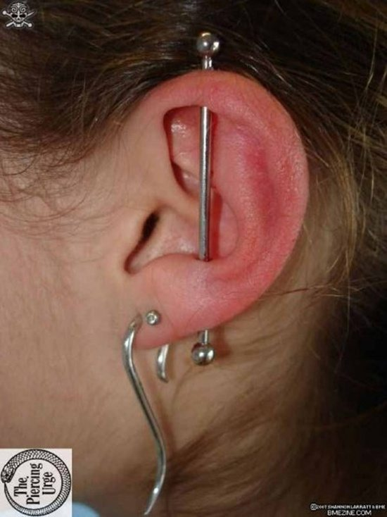 TheVegasGirl: Final Update on My Industrial Piercing