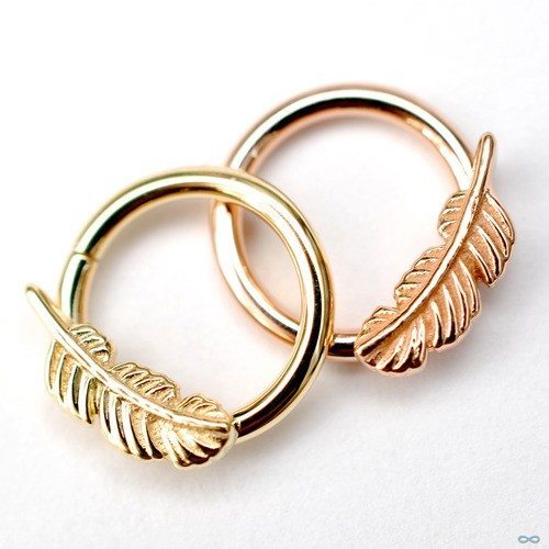 6 Marvelous Daith Piercing Jewelry Items For All Tastes Ear Piercing Jewelry